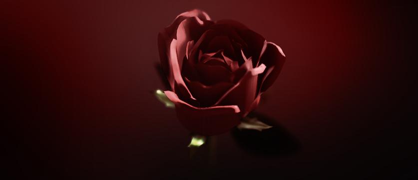 rose_blog